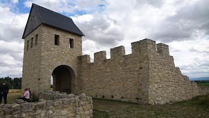 Royal palace of Werla