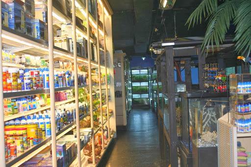 Pet Store «Aquarium Paradise», Reviews And Photos, 234 Washington Ave,  Belleville, NJ 07109, USA