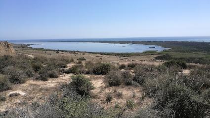 Punta Entinas-Sabinar