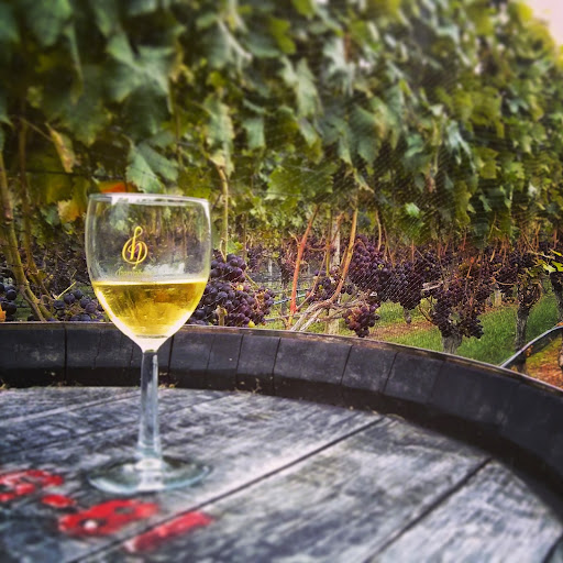 Vineyard «Harmony Vineyards», reviews and photos, 169 Harbor Rd, St James, NY 11780, USA