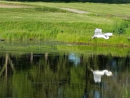 Golf Club «Antioch Golf Club», reviews and photos, 40150 IL-59, Antioch, IL 60002, USA