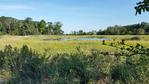 Nature Preserve «Welwyn Preserve», reviews and photos, 100 Crescent Beach Rd, Glen Cove, NY 11542, USA