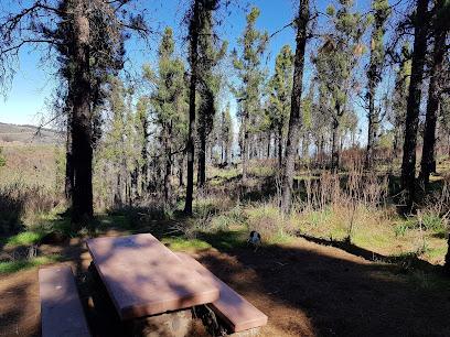 Llanos de Ana López