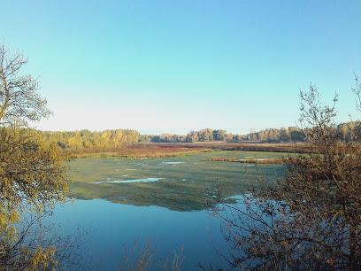 Reserva Natural de los Sotos del Ebro en Alfaro