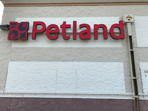 Pet Supply Store «Petland St. Louis», reviews and photos, 6131 Ronald Reagan Dr, Lake St Louis, MO 63367, USA