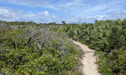 Coconut Point Sanctuary