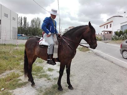 Recinto Ferial Fernán Núñez.