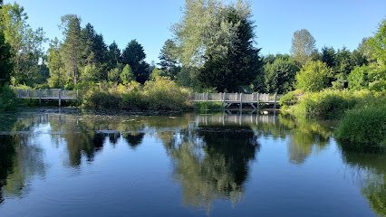 Meadowbrook Pond Seattle