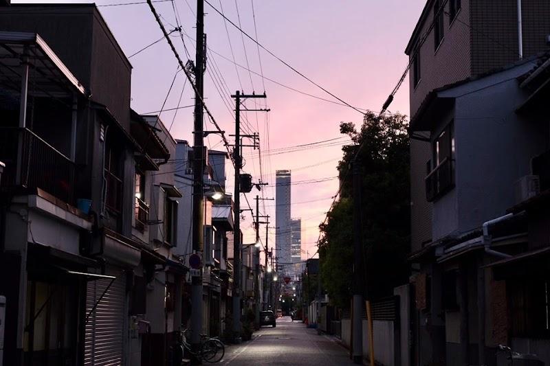 てんぷらー(Ikunomori-Tempura)
