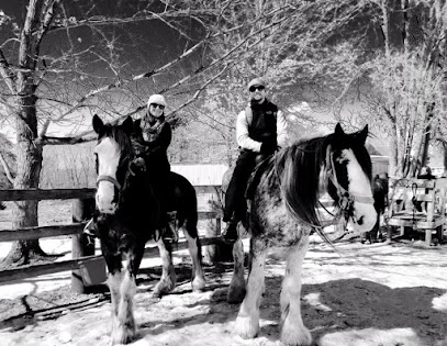 experience-wisdells-things-to-do-red-ridge-riding-stables