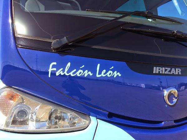 Autocares Falcon Leon SL