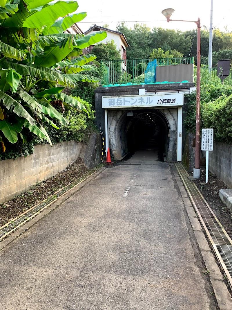 60丁目トンネル連絡線 - 60th Street Tunnel Connection ...