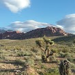 Red Rock Canyon NCA Scenic Drive Bureau of Land Management