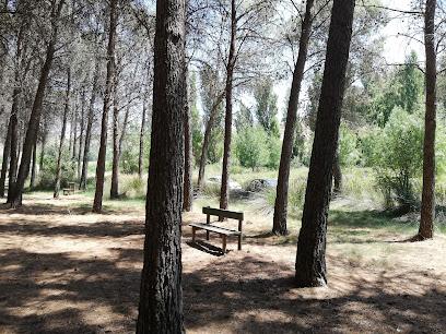 Forestal Dehesa de Santorcaz Park