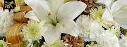 Business Reviews Aggregator: Prince George Florists