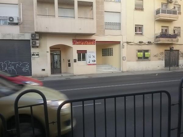 Centro de Estudios Musicales AMADEUS