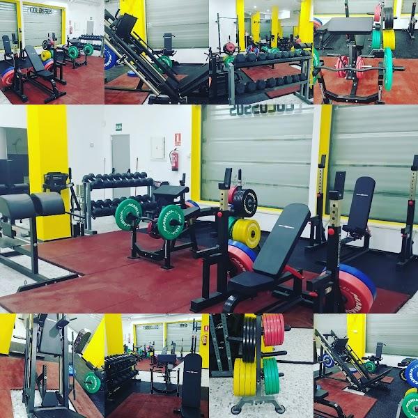 Gym Colossus