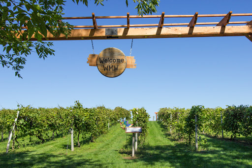 Winery «Wild Mountain Winery», reviews and photos, 16906 Wild Mountain Rd, Taylors Falls, MN 55084, USA