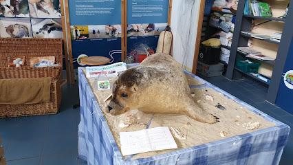 Robbenzentrum Föhr - zur Rettung der Meeressäuger gemeinnützige UG