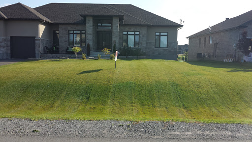 Lawn care service Primo Landscaping in Ottawa (ON) | LiveWay