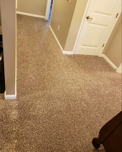 Safe-Dry Carpet Cleaning in Madison, Alabama