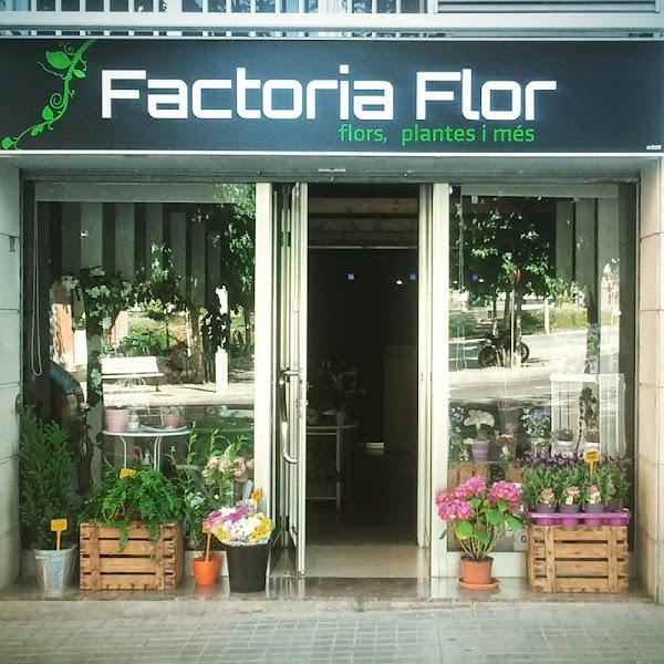 Factoría Flor. Flores on line. Envío Península, Baleares, Francia y Alemania,