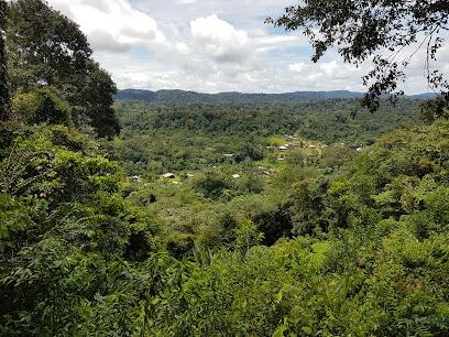 Guiana Amazonian Park