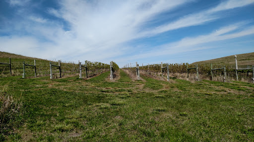 Winery «Prairie Fire Winery», reviews and photos, 20250 Hudson Ranch Rd, Paxico, KS 66526, USA