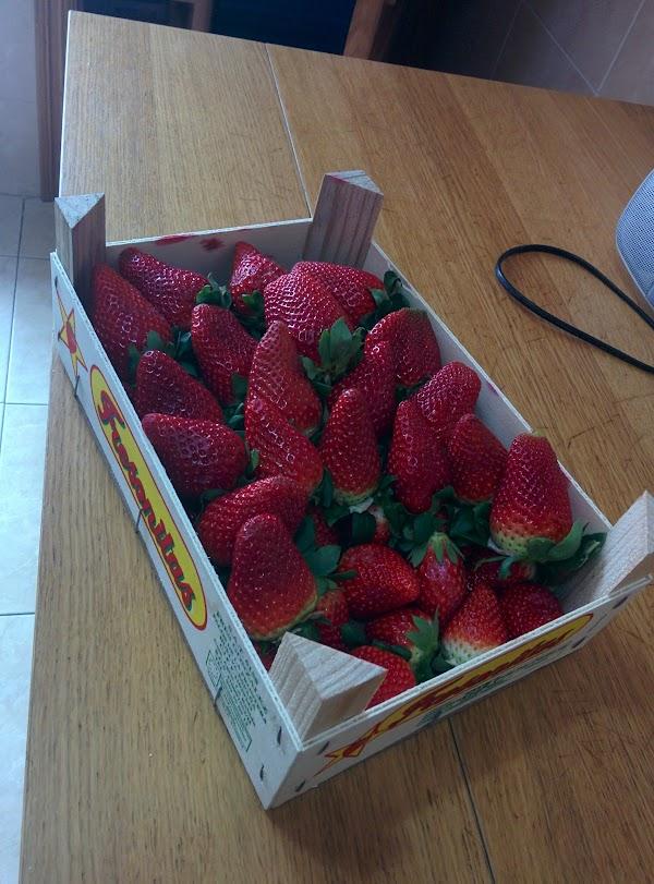 Frutas  Verduras Vera