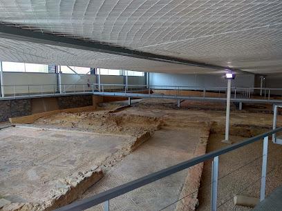 Villa Romana de Orpheus