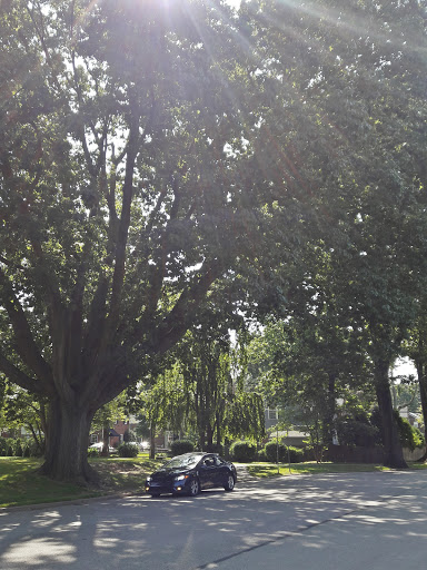 Park «South Ardmore Park», reviews and photos, 1420 Sussex Rd, Wynnewood, PA 19096, USA