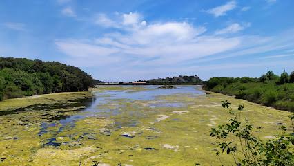 Marismas de Santoña Natural Park