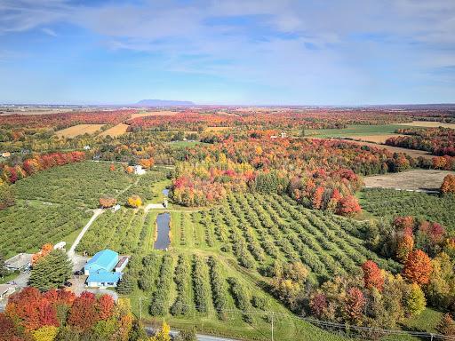 Verger Ferme Cidricole Équinoxe à Farnham (Quebec) | CanaGuide