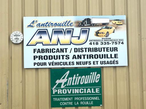 Limousine Antirouille Provinciale 2002 Enr in Thetford Mines (Quebec) | CanaGuide