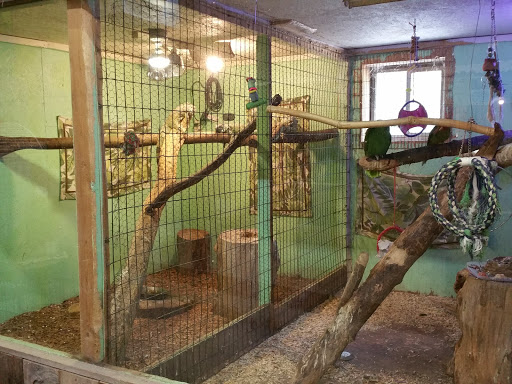 Zoo «Little Ponderosa Zoo and Rescue», reviews and photos, 629 Granite Rd, Clinton, TN 37716, USA
