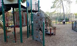 Max A Hasse Jr Community Park