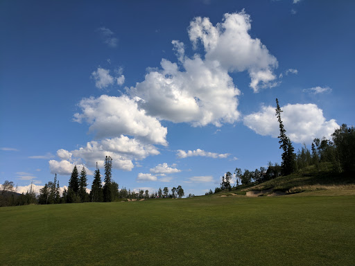 Golf Course «Raven Golf Club At Three Peaks», reviews and photos, 2929 Golden Eagle Rd, Silverthorne, CO 80498, USA