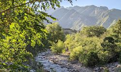 Big Cottonwood Canyon Trail