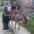 Çiğdemli Köyü Muhtarliği