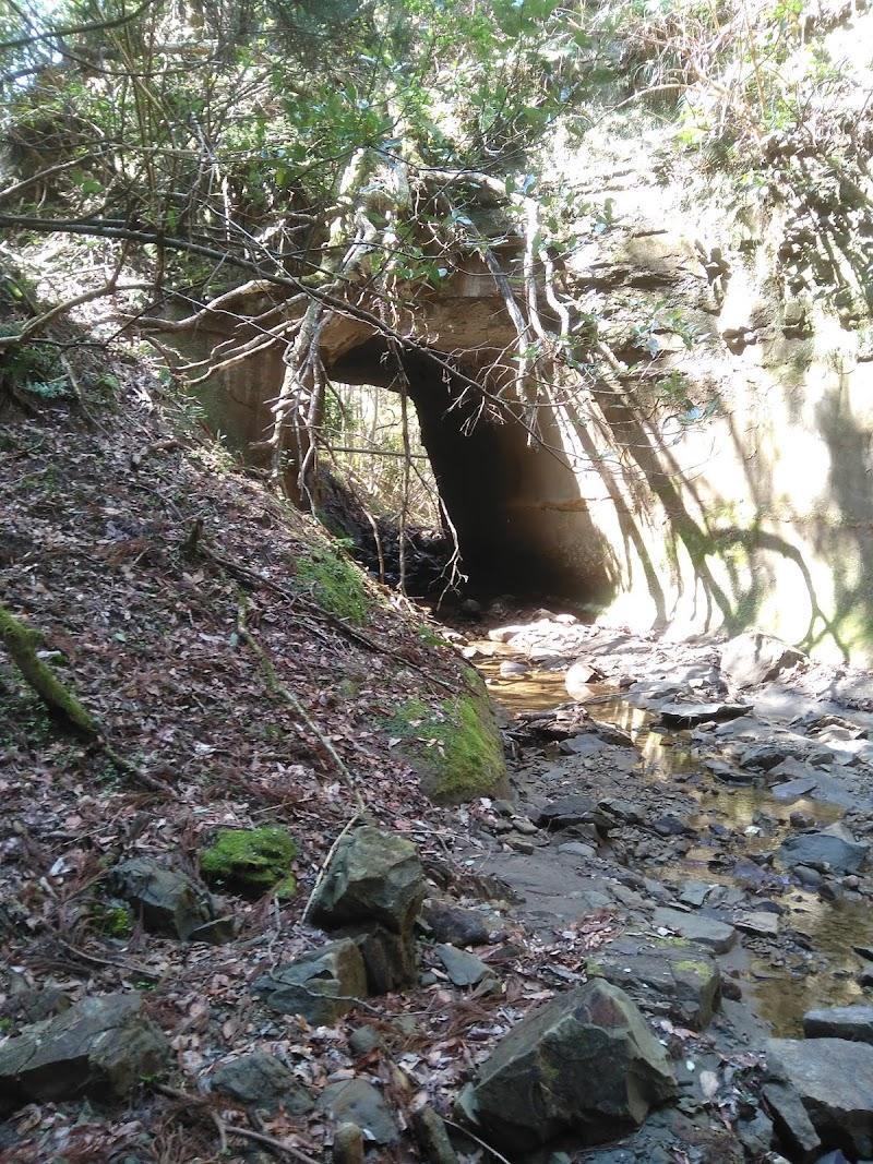 牛掘の奇岩(川廻し)
