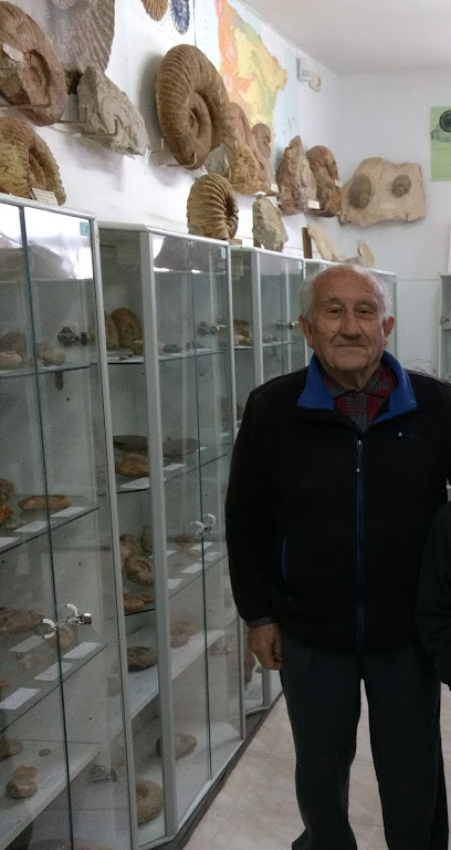 Museo Paleontológico Juan Cano
