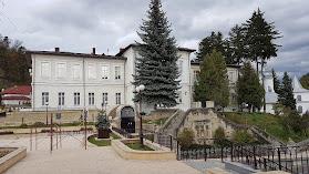 "Colegiul Național ""Petru Rareș"""