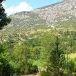 Sinan Hoca Köyü Köy Muhtarlığı