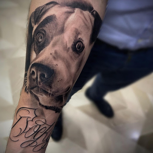 Loyalty Ink Termoli