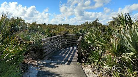 Tree Services in Juno Beach, FL