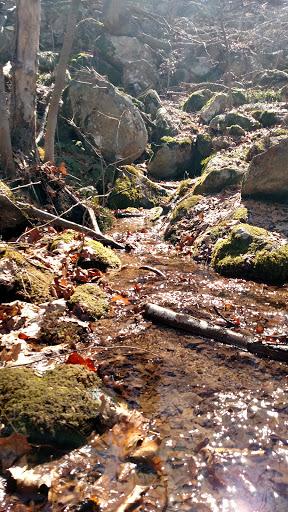 Nature Preserve «Wildlands Conservancy South Mountain Preserve», reviews and photos, Alpine St, Emmaus, PA 18049, USA