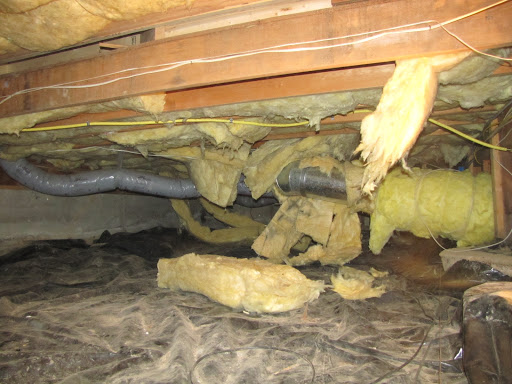 Insulation Contractor «Clean Crawls - Insulation Install & Removal Tacoma», reviews and photos