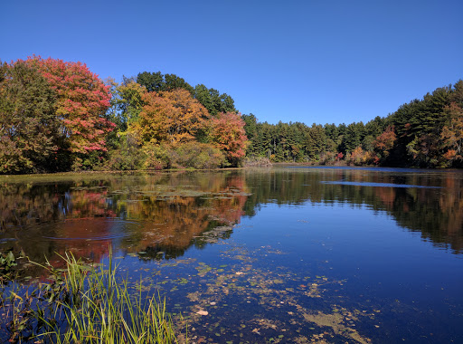 Park «Russell Mill Pond and Town Forest», reviews and photos, 105 Mill Rd, Chelmsford, MA 01824, USA