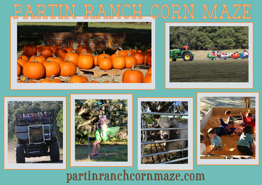 Tourist Attraction «Partin Ranch Corn Maze», reviews and photos, 5601 N Canoe Creek Rd, Kenansville, FL 34739, USA