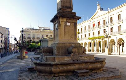 Tafalla City Council